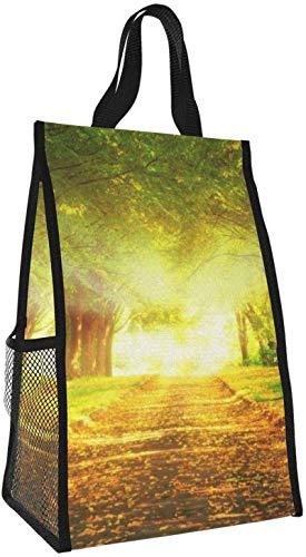 Bolsa de aislamiento plegable, hermoso camino de luz brillante, bolso de almuerzo portátil, bolso de picnic de gran capacidad para viajes de oficina de trabajo