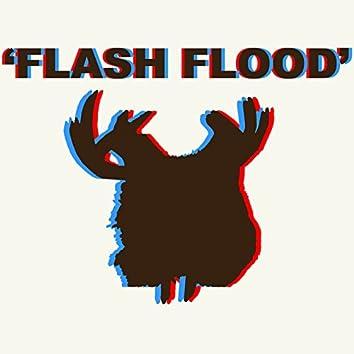 Flash Flood - Single