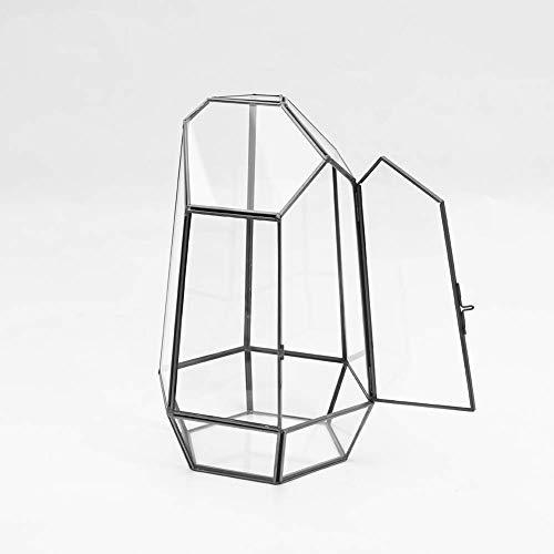 MINGZE Piante Trasparente Geometrico terrario Contenitore, Ci Sono Porte, Desktop Vaso per Piante succulente Fern Moss Air Miniature Outdoor Fairy Garden Regalo Decorativo (13 * 13 * 22cm, Nero Rame)