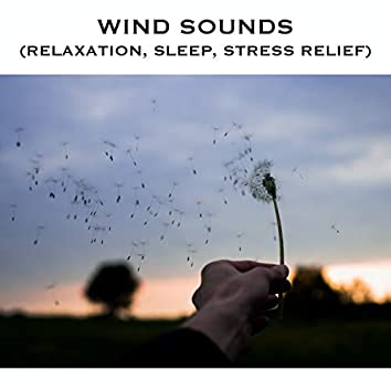 Wind Sounds (Relaxation, Sleep, Stress Relief)