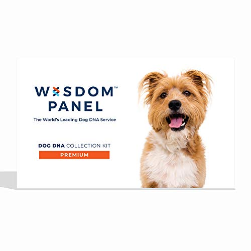 Wisdom Panel Premium – Dog DNA Test for Comprehensive Health, Traits, and Ancestry