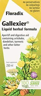Floradix Gallexier Artichoke Food Supplement 250ml