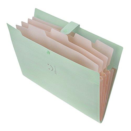 ドキュメント ファイル a4 フォルダー スナップ式 クリアファイル ファイルケース 仕分けフォルダー 資料フ...