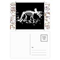 恐竜の骨の化石のミニチュア 公式ポストカードセットサンクスカード郵送側20個