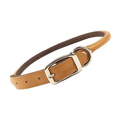 Rolled Oak Leather Collar Tan