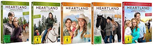 Heartland - Paradies für Pferde: Staffel 10-12