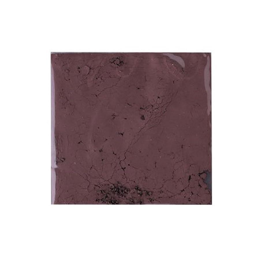 ぬいぐるみ大統領第三ピカエース ネイル用パウダー ピカエース カラーパウダー 着色顔料 #785 チョコレートブラウン 2g アート材