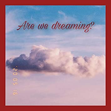 Are We Dreaming ?