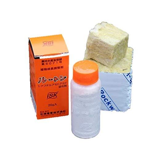 自宅で挑戦!挿し木用ロックウールLサイズ20個と発根促進剤ルートンのスターターズセット/ハーフサイズ