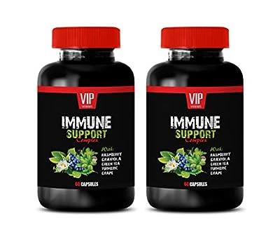antioxidant Green Tea - Immune Support Complex - Natural Herbal Formula - Works Fast - Turmeric Green Tea GRAVIOLA - Green Tea Diet Pills - 2 Bottle (120 Caps)