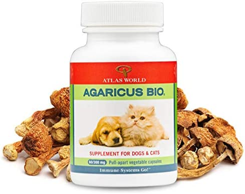 Atlas World Agaricus Bio Agaricus Blazei for Pet Immune System Support Cat and Dog Immune Booster product image