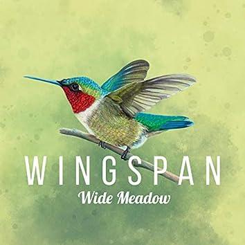 Wide Meadow (Wingspan Original Video Game Soundtrack)