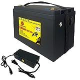SCREMOWER LiFePO4 Battery...image