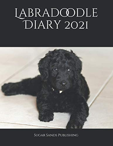 Labradoodle Diary 2021: Dog Dairies for the most popular dog breeds in the UK.