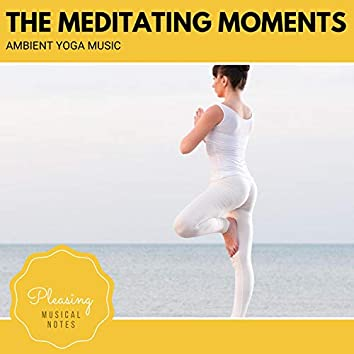 The Meditating Moments - Ambient Yoga Music
