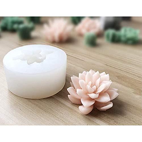 3D silicona suculenta cactus velas hechas a mano moldes fondant molde jabón molde para día de San Valentín, fiesta de cumpleaños, boda, spa, decoración del hogar