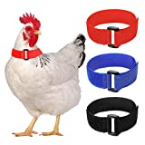 6 Pieces Anti Crow Rooster Collar Anti Noise...