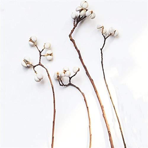 Hohe Qualität 300G Pilze Gras Natürliche Kleine Ginkgo Nüsse Pflanze Brautjungfer Blumen Bouquet Startseite Deco Keine Vase deko Blumen (Color : 300G raw Color)