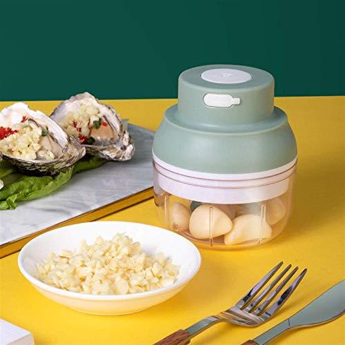 NLRHH Mini grougeuse de Viande, 100 ML / 250 ML Capacité de légumes et de Viande de la capacité, Moulin à Viande Rechargeable USB (Couleur: Vert, Taille: 100ml) Peng