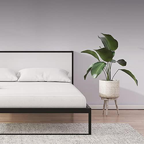 Signature Sleep Memoir 8' High-Density, Responsive Memory...
