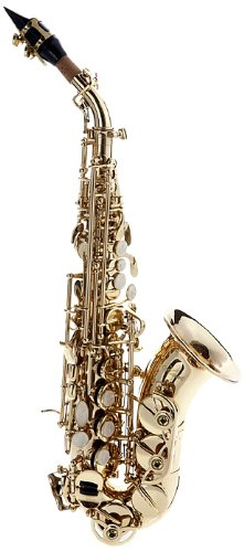 Hawk Curved Soprano Saxophone Gold with Case, Mouthpiece and Reed