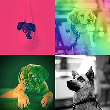 ストレスのたまった犬-穏やかな