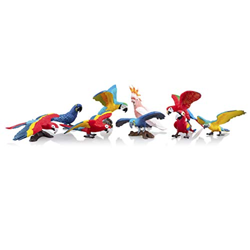 TOYMANY 9PCS Realistic Parrot Birds Figurines, 2-4' Plastic Macaw Animals Figures Set Includes Cockatoo,Scarlet Macaw, Educational Toy Cake Toppers Christmas Birthday Gift for Kids Toddlers