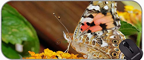 XXL GAMING MOUSE PAD Equipo de escritorio, mariposas mariposa insecto maridaje animal alfombrilla de ratón con bordes cosidos