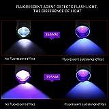 Immagine 2 rqier torcia ultravioletti a led