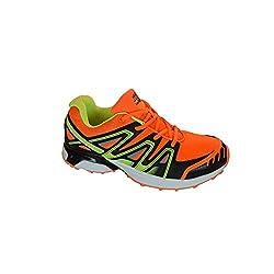 Sandic Herrenlaufschuhe, Trainingsschuhe, leicht, modisch und bequem Gr. 41-46, schöne Farben