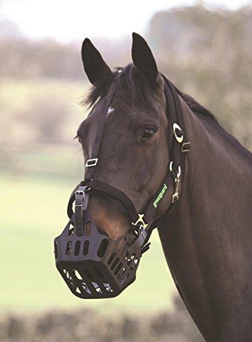 Shires Greenguard Head Collar Cob Black