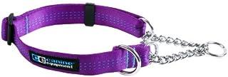 Canine Equipment Technika 1-Inch Martingale Dog Collar, Medium, Purple