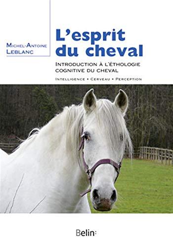 L'esprit du cheval