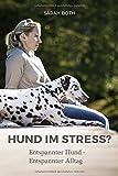 Hund im Stress? Entspannter Hund - Entspannter Alltag