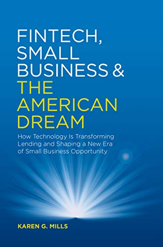 Fintech, Small Business & the American Dream: How Technology Is Transforming Lending and Shaping a New Era of Small Business Opportunity (English Edition)