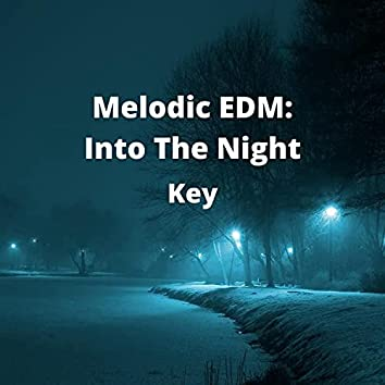 Melodic EDM: Into The Night
