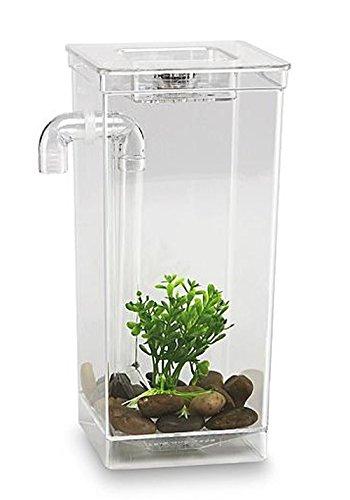 As Seen on TV 56028 My Fun Fish Tank