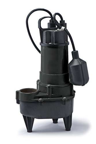 ECO-FLO Products RSE50W Cast Iron Sewage Pump