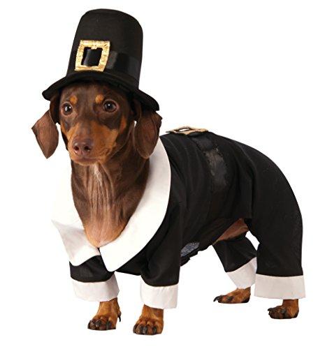 Rubie's Pilgrim Boy Dog Costume, Large