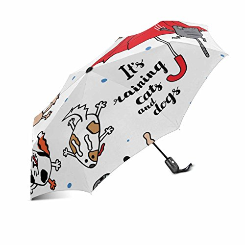 InterestPrint Funny It's Raining Cats and Dogs Windproof Automatic Open and Close Folding Umbrella, Unbreakable Portable Outdoor Travel Compact Umbrella with UV Protection