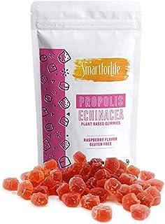 Smart for Life Elderberry Gummies with Vitamin C - Propolis Echinacea - Plant Based Vegetarian Gummies - Raspberry Flavor ...