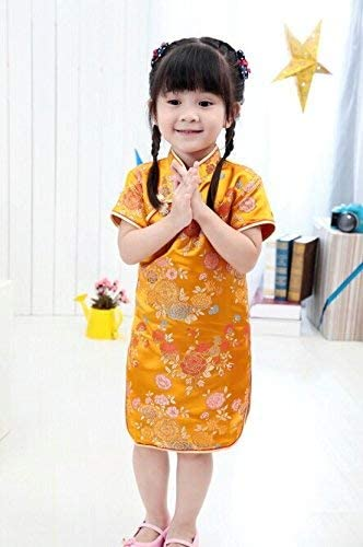 Chinese traditional dress qipao _image4