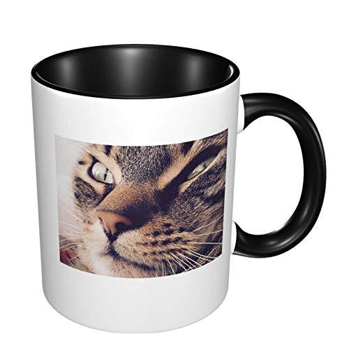 Taza de café de cerámica brillante del animal doméstico del ojo cercano del gato, taza de té para la oficina y el hogar conveniente para el microondas