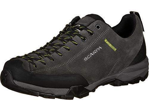 Scarpa Mojito Trail GTX, Chaussures de Randonnée Basses Homme, Gris Shark Gore Tex Hkb Salix, 43 EU