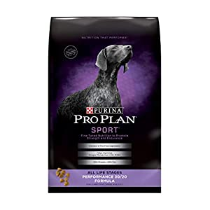 Purina Pro Plan High Calorie, High Protein Dry Dog Food, SPORT 30/20 Chicken & Rice Formula – 37.5 lb. Bag (Packaging May Vary)