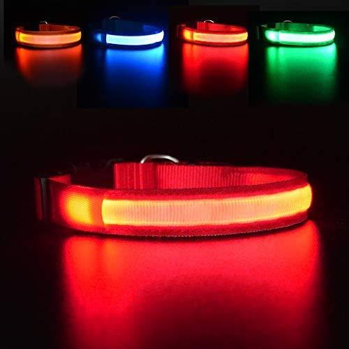 MASBRILL Hundehalsband Leuchtend USB Aufladbar Wasserdichtes LED Leuchthalsband für Kleine Mittlere Große Hunde Einstellbar Sicherheit Hundehalsband mit 3 Beleuchtungsmodi - Rot - S