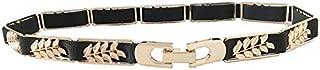SGJFZD Women's Metal Leaf Elastic Waist Belt Dress Decoration Fashionable Simple Gold Waist Chain (Color : Black)