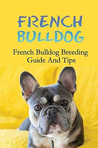 French Bulldog: French Bulldog Breeding Guide And Tips: Things To Do Before Breeding Your French Bulldog