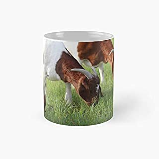 Three of a Kind Goats Photograph | Novelty Gift Cup for Women, Girlfriend
