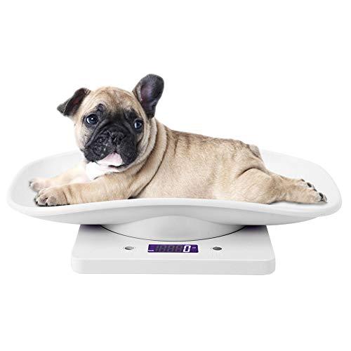 Báscula para Mascotas, 10 kg/1g Báscula Digital para Mascotas pequeña para Gatos, Perros, Herramienta de medición Báscula electrónica de Cocina, niños pequeños/Cachorros/Gatos/Perros/ADU